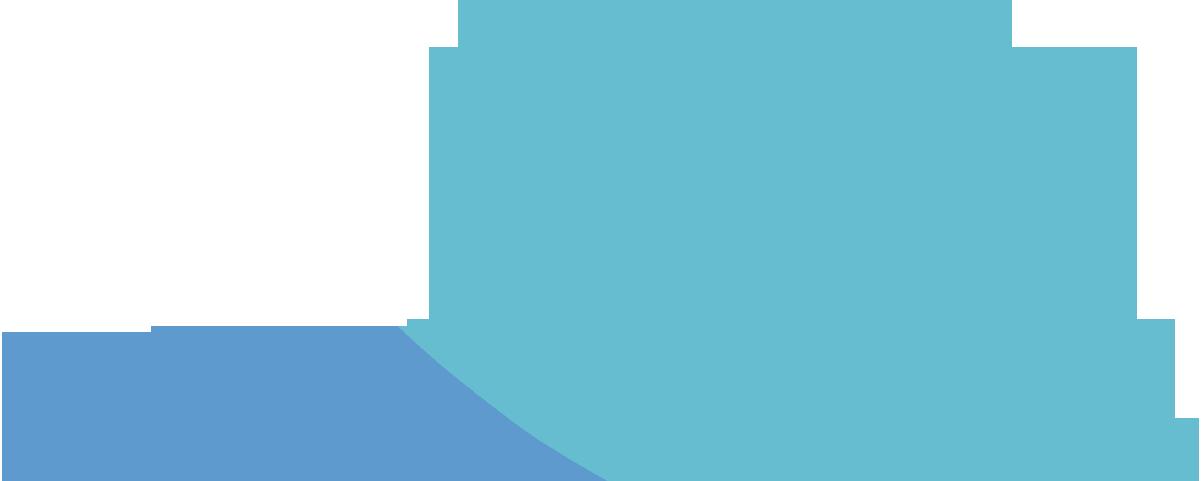 bg-leafs-blue