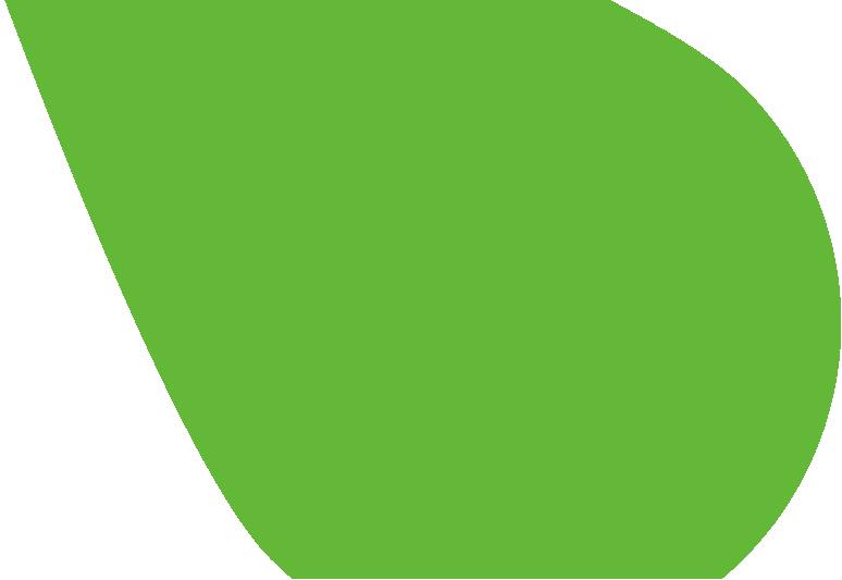 bg-leafs-green