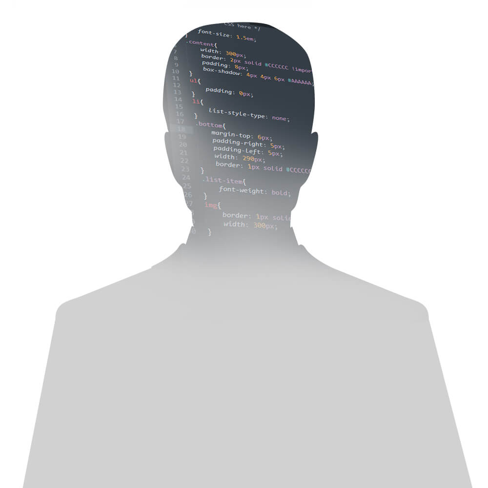 IT avatar